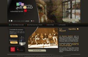 Lancement de notre nouveau site web www.vignobles-mayard.fr dans Actu du domaine dans la vigne et dans la cave website-300x195